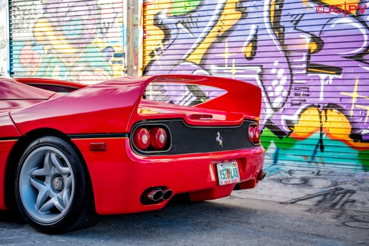 F50Wynwood17